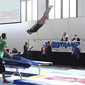 Int. Deutsches Turnfest: Doppel-Mini-Trampolin